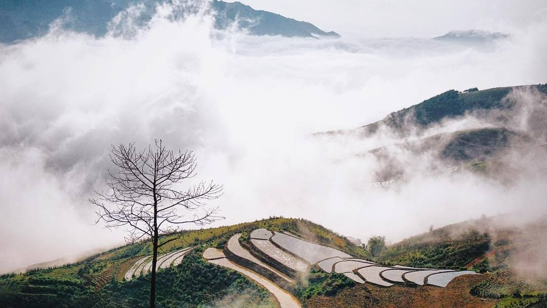 Vietnam's northwest region: A wild and charming retreat for travel lovers