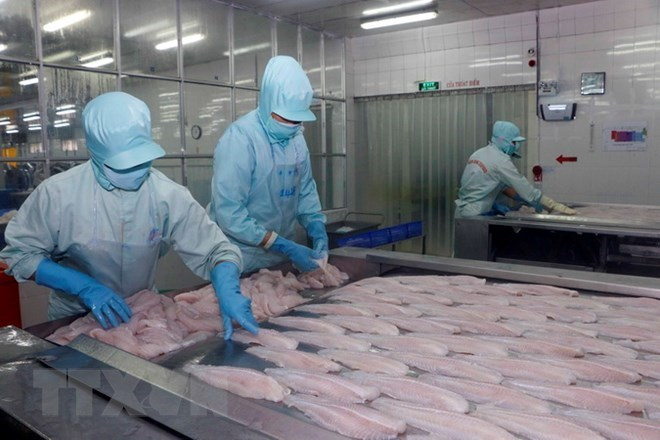 Can Tho prepares for large investment promotion conference, Tra fish export to US increases despite anti-dumping measures, Agro-forestry-fishery exports up 9.9 percent in five months