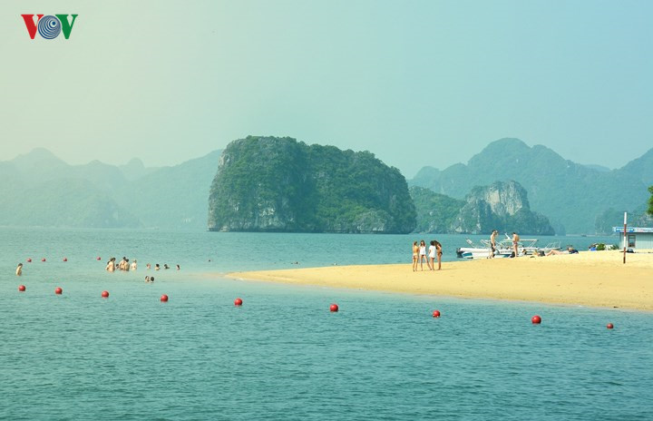 Unspoiled charms of deserted beaches in Quang Ninh, travel news, Vietnam guide, Vietnam airlines, Vietnam tour, tour Vietnam, Hanoi, ho chi minh city, Saigon, travelling to Vietnam, Vietnam travelling, Vietnam travel, vn news