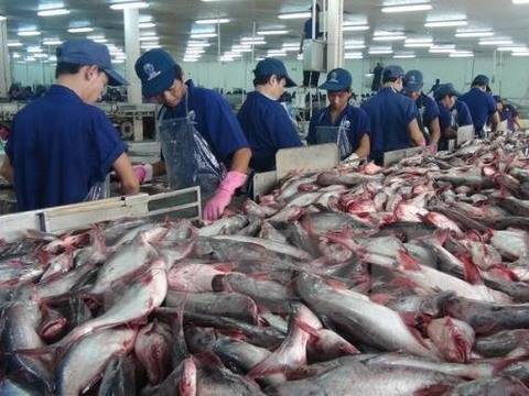 Vietnamese catfish exports dominate US market, Contract signed to start feasibility study for Long Thanh airport, Vietnamese garment sector maintains growth in traditional markets, Five-month fishing output surges 2.4 percent