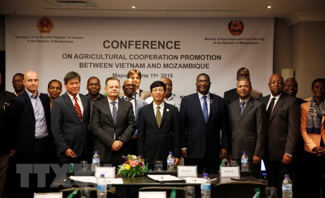 Vietnam, Mozambique further foster agricultural cooperation, HCM City leader meets outgoing UK ambassador