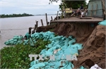 Dong Thap battles to prevent erosion along Tien River
