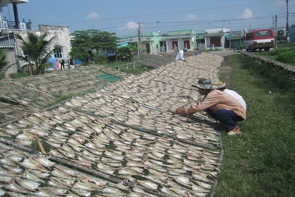 VN's seafood exports to face difficulties following EC's warning extension, vietnam economy, business news, vn news, vietnamnet bridge, english news, Vietnam news, news Vietnam, vietnamnet news, vn news, Vietnam net news, Vietnam latest news, Vietnam brea
