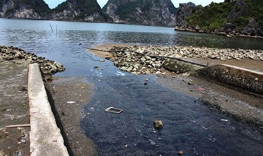 Wastewater ruining Ha Long Bay, Vietnam environment, climate change in Vietnam, Vietnam weather, Vietnam climate, pollution in Vietnam, environmental news, sci-tech news, vietnamnet bridge, english news, Vietnam news, news Vietnam, vietnamnet news, Vietna