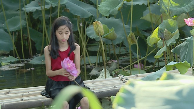 Lotus flower shows tranquil charm in summer heat, travel news, Vietnam guide, Vietnam airlines, Vietnam tour, tour Vietnam, Hanoi, ho chi minh city, Saigon, travelling to Vietnam, Vietnam travelling, Vietnam travel, vn news