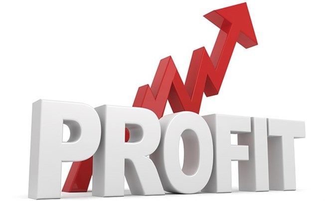 More listed businesses post profit gains in first half, vietnam economy, business news, vn news, vietnamnet bridge, english news, Vietnam news, news Vietnam, vietnamnet news, vn news, Vietnam net news, Vietnam latest news, Vietnam breaking news
