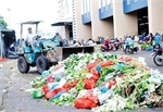 Fruit, vegetable waste causes serious pollution at wholesale markets