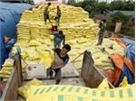 Vietnam imports over 2.4 million tonnes of fertiliser in six months