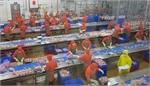 VN must work hard to meet export targets