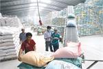 Vietnamese prestigious exporters honoured