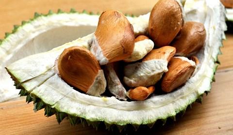 Demand for durian seeds surges, vietnam economy, business news, vn news, vietnamnet bridge, english news, Vietnam news, news Vietnam, vietnamnet news, vn news, Vietnam net news, Vietnam latest news, Vietnam breaking news