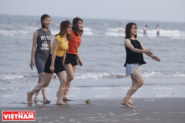 Unspoiled beauty of Thai Binh beaches, travel news, Vietnam guide, Vietnam airlines, Vietnam tour, tour Vietnam, Hanoi, ho chi minh city, Saigon, travelling to Vietnam, Vietnam travelling, Vietnam travel, vn news