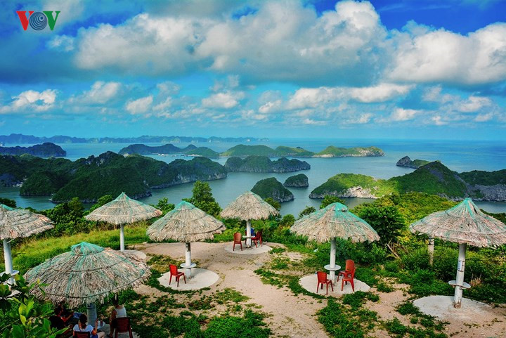 Best places to visit in Vietnam during any season, travel news, Vietnam guide, Vietnam airlines, Vietnam tour, tour Vietnam, Hanoi, ho chi minh city, Saigon, travelling to Vietnam, Vietnam travelling, Vietnam travel, vn news