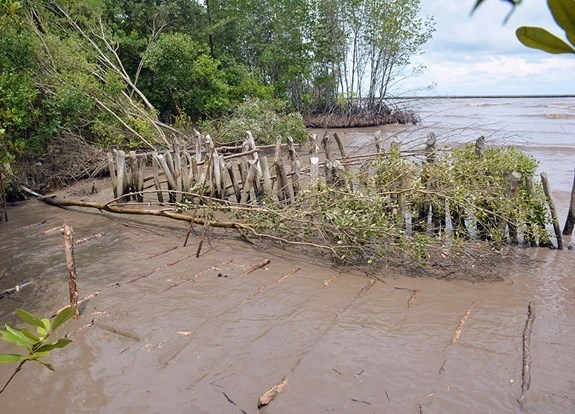 Kien Giang faces serious riverbank, coastal erosion