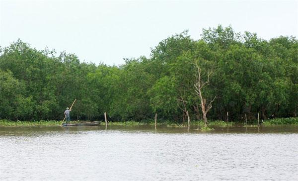 Preserve wetlands, preserving biodiversity, fighting climate change, Vietnam economy, Vietnamnet bridge, English news about Vietnam, Vietnam news, news about Vietnam, English news, Vietnamnet news, latest news on Vietnam, Vietnam