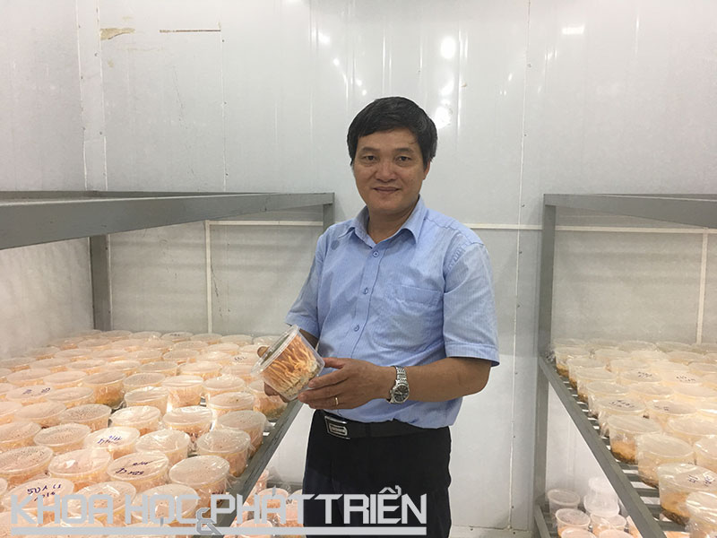 vietnam economy, business news, vn news, vietnamnet bridge, english news, Vietnam news, news Vietnam, vietnamnet news, vn news, Vietnam net news, Vietnam latest news, Vietnam breaking news, Ngo Xuan Nghien, laboratory, mushroom