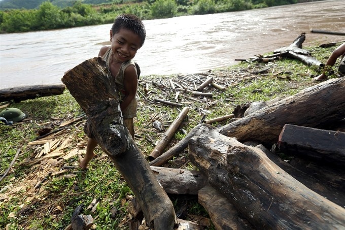 Children risk life and limb to collect bits of wood, social news, vietnamnet bridge, english news, Vietnam news, news Vietnam, vietnamnet news, Vietnam net news, Vietnam latest news, vn news, Vietnam breaking news