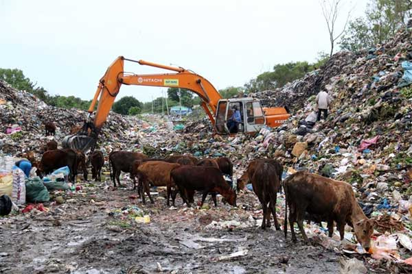 Phu Quoc, environmental pollution, set up barriers to block garbage trucks, Vietnam economy, Vietnamnet bridge, English news about Vietnam, Vietnam news, news about Vietnam, English news, Vietnamnet news, latest news on Vietnam, Vietnam