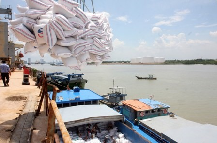 Quang Ninh strives to remain top position in PCI ranking, Rice exporters told to meet Chinese quality requirements as shipments slump, Vinacomin aims to produce 41 tonnes of coal in 2019, Trade Promotion Centre for Agriculture accused of overcharging