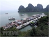 Ha Long suspends licenses of 36 cruise ships