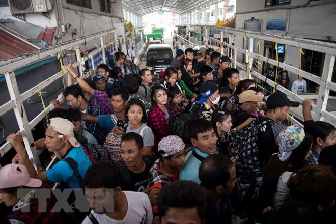 Illegal Vietnamese workers in Thailand must return home, social news, vietnamnet bridge, english news, Vietnam news, news Vietnam, vietnamnet news, Vietnam net news, Vietnam latest news, vn news, Vietnam breaking news