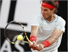 Nadal i u Federer ti chung kt Rome Open