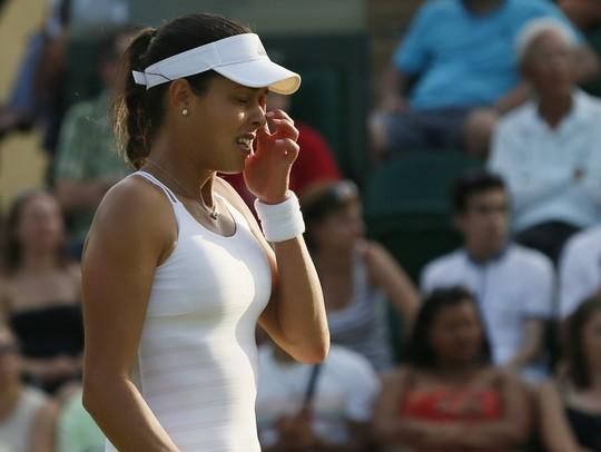 Djokovic, Sharapova, Ivanovic, Errani, Wimbledon