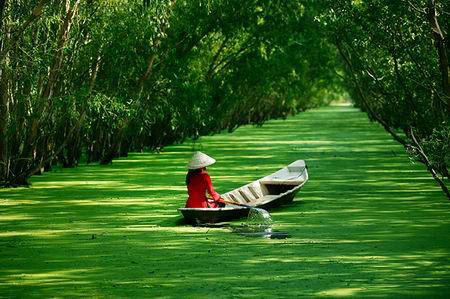 vietnam, landscape, beauty, photo