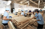 Wood industry: Sustainable development