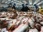 US proposes maintaining VN eligibility to export catfish