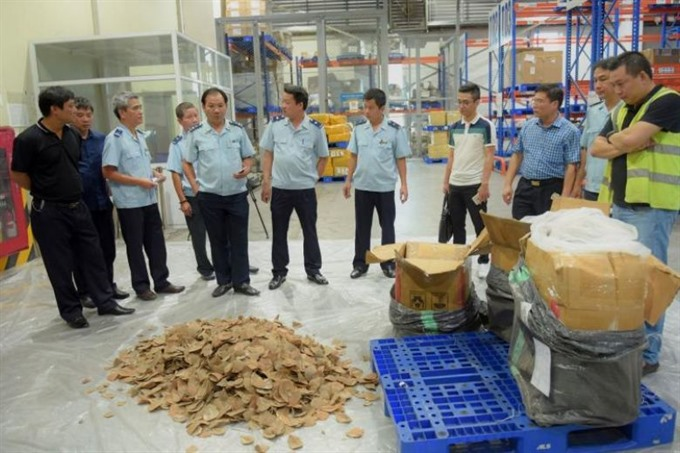 Hanoi airport seizes tonne of pangolin scales and ivory, Vietnam environment, climate change in Vietnam, Vietnam weather, Vietnam climate, pollution in Vietnam, environmental news, sci-tech news, vietnamnet bridge, english news, Vietnam news, news Vietnam