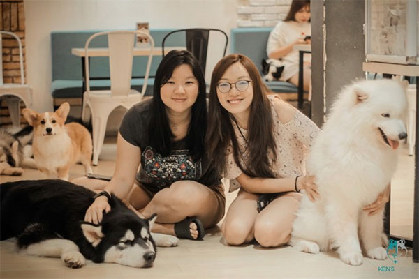 HCM City, pet coffee shops, Pet Me and Ken's House, Vietnam economy, Vietnamnet bridge, English news about Vietnam, Vietnam news, news about Vietnam, English news, Vietnamnet news, latest news on Vietnam, Vietnam