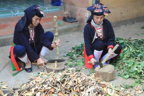 Medicinal herbs of the Dao people, entertainment events, entertainment news, entertainment activities, what's on, Vietnam culture, Vietnam tradition, vn news, Vietnam beauty, news Vietnam, Vietnam news, Vietnam net news, vietnamnet news, vietnamnet bridge