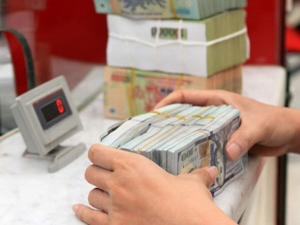 In The Year Until December 7 Greenback Reciated By Around 2 4 Per Cent Against Vietnamese Currency Which However Was Lower Than 3