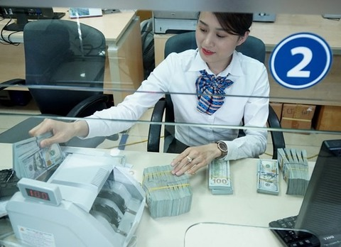 VN central bank resumes dollar purchases to build up foreign reserve, vietnam economy, business news, vn news, vietnamnet bridge, english news, Vietnam news, news Vietnam, vietnamnet news, vn news, Vietnam net news, Vietnam latest news, Vietnam breaking n