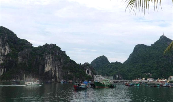 Ha Long-Cat Ba Alliance, discuss pollution, World Heritage Site of Ha Long Bay, Vietnam economy, Vietnamnet bridge, English news about Vietnam, Vietnam news, news about Vietnam, English news, Vietnamnet news, latest news on Vietnam, Vietnam
