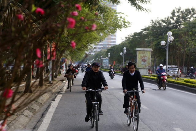 First sight of blossoming peach trees in Hanoi are first sign of Tet