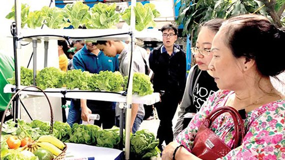 Geographical indication critical for VN produce protection, vietnam economy, business news, vn news, vietnamnet bridge, english news, Vietnam news, news Vietnam, vietnamnet news, vn news, Vietnam net news, Vietnam latest news, Vietnam breaking news