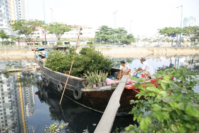 Binh Dong Floating Flower Market.Ornamental Plant Vendors Flock To Binh Dong Wharf Ahead Of Tet