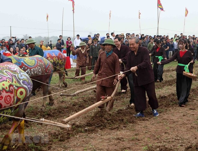 Traditional ploughing festival wishes for bumper harvests, entertainment events, entertainment news, entertainment activities, what's on, Vietnam culture, Vietnam tradition, vn news, Vietnam beauty, news Vietnam, Vietnam news, Vietnam net news, vietnamnet