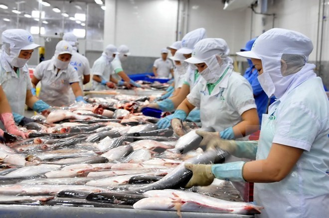Vietnam gains $3.15 billion from rice export in 2018, Vietnam targets 18 million foreign holiday-makers in 2019, Fisheries sector targets 10 billion USD export value, Industry 4.0 technologies crucial for tra fish sector: Minister