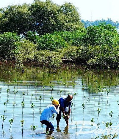 Green Climate Fund helps Quang Nam adapt to climate change, Vietnam environment, climate change in Vietnam, Vietnam weather, Vietnam climate, pollution in Vietnam, environmental news, sci-tech news, vietnamnet bridge, english news, Vietnam news, news Viet
