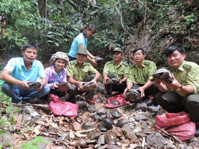 Over 80 wild animals reintroduced at national park,