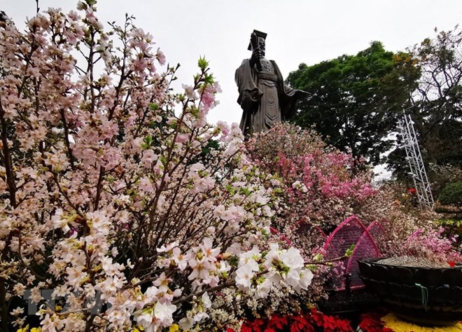 Japanese cherry blossom festival opens in Hanoi, entertainment events, entertainment news, entertainment activities, what's on, Vietnam culture, Vietnam tradition, vn news, Vietnam beauty, news Vietnam, Vietnam news, Vietnam net news, vietnamnet news, vie