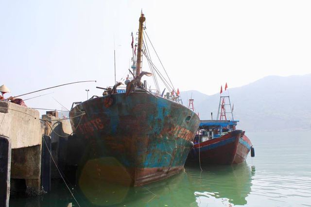 Modern steel fishing boats left abandoned due to costly operation, social news, vietnamnet bridge, english news, Vietnam news, news Vietnam, vietnamnet news, Vietnam net news, Vietnam latest news, vn news, Vietnam breaking news