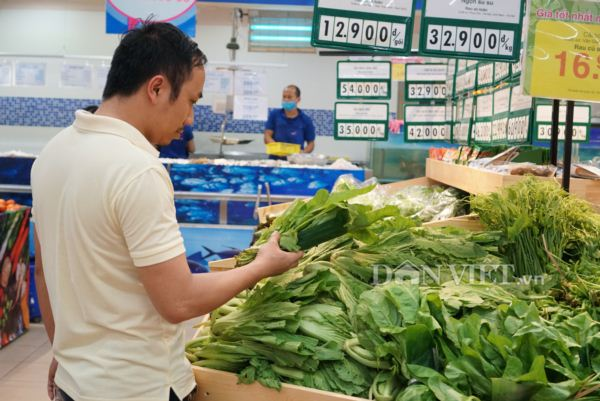 Vietnamese supermarkets start saying no to plastic bags, Vietnam environment, climate change in Vietnam, Vietnam weather, Vietnam climate, pollution in Vietnam, environmental news, sci-tech news, vietnamnet bridge, english news, Vietnam news, news Vietnam