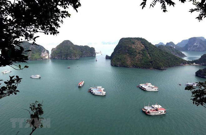 US newspaper names Ha Long Bay among world's 35 most beautiful natural wonders, travel news, Vietnam guide, Vietnam airlines, Vietnam tour, tour Vietnam, Hanoi, ho chi minh city, Saigon, travelling to Vietnam, Vietnam travelling, Vietnam travel, vn news