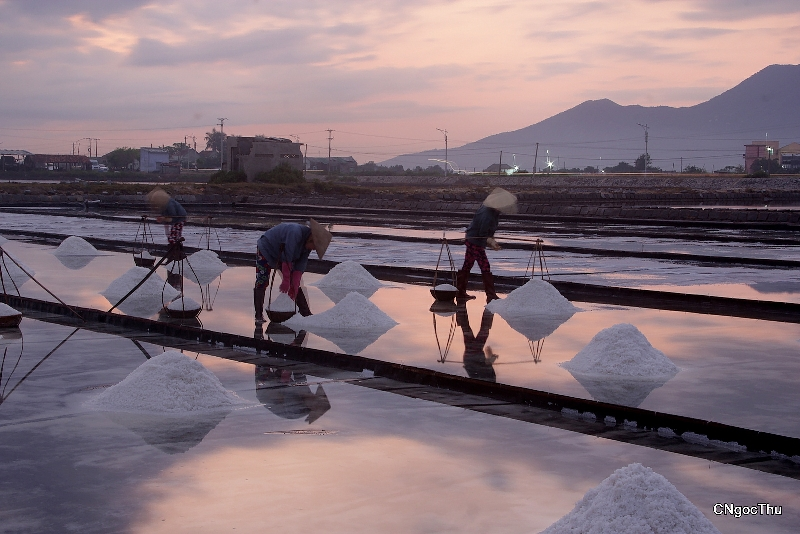 Visiting Hon Khoi salt field in Khanh Hoa province, travel news, Vietnam guide, Vietnam airlines, Vietnam tour, tour Vietnam, Hanoi, ho chi minh city, Saigon, travelling to Vietnam, Vietnam travelling, Vietnam travel, vn news